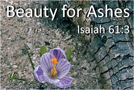 Beauty for ashes: A Christian Bible Study Workbook 132 ...