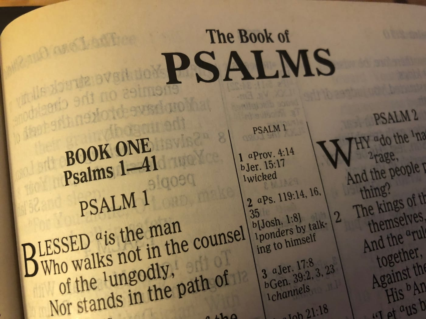 Psalm 8 - The Glory of God in the Face of Christ