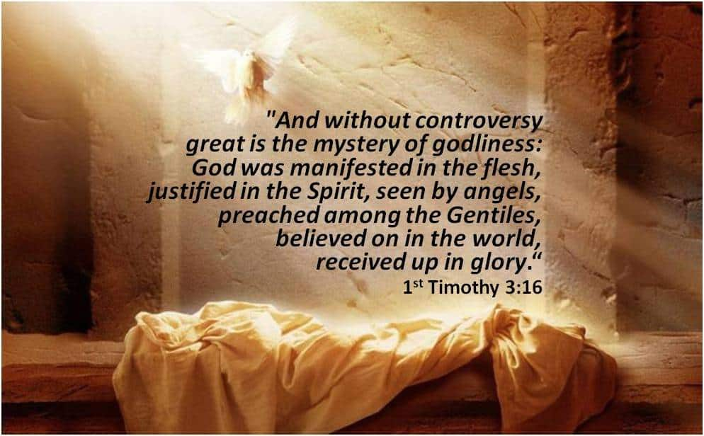Mystery of Godliness #1