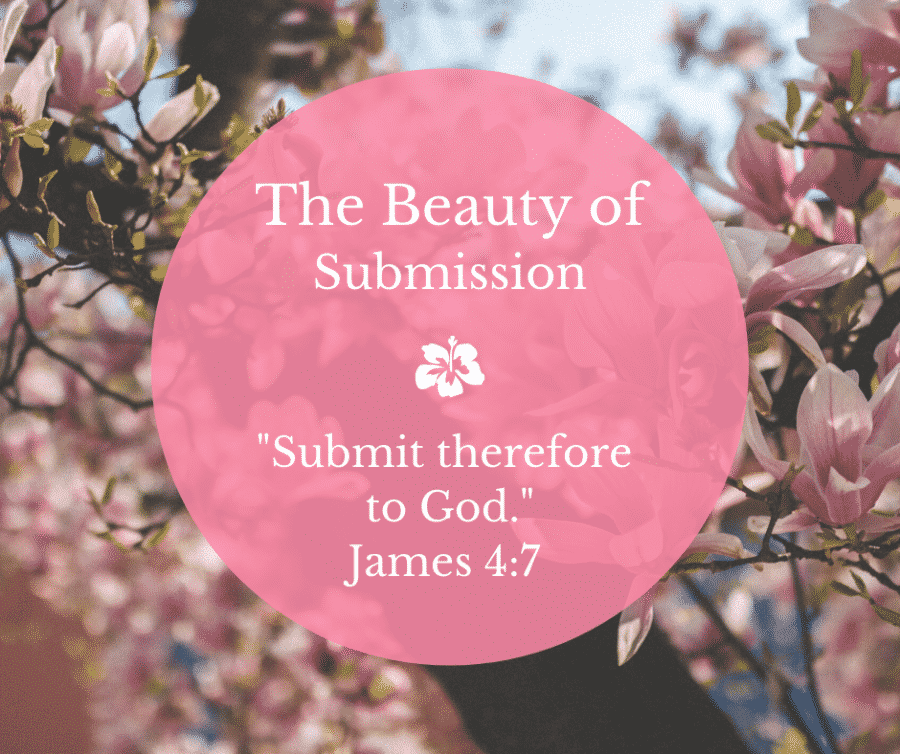 The Beauty of Submission -- 2020 Kansas Ladies Retreat